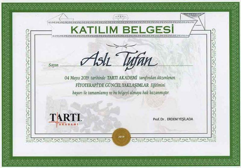 Tarti-Akademi-1